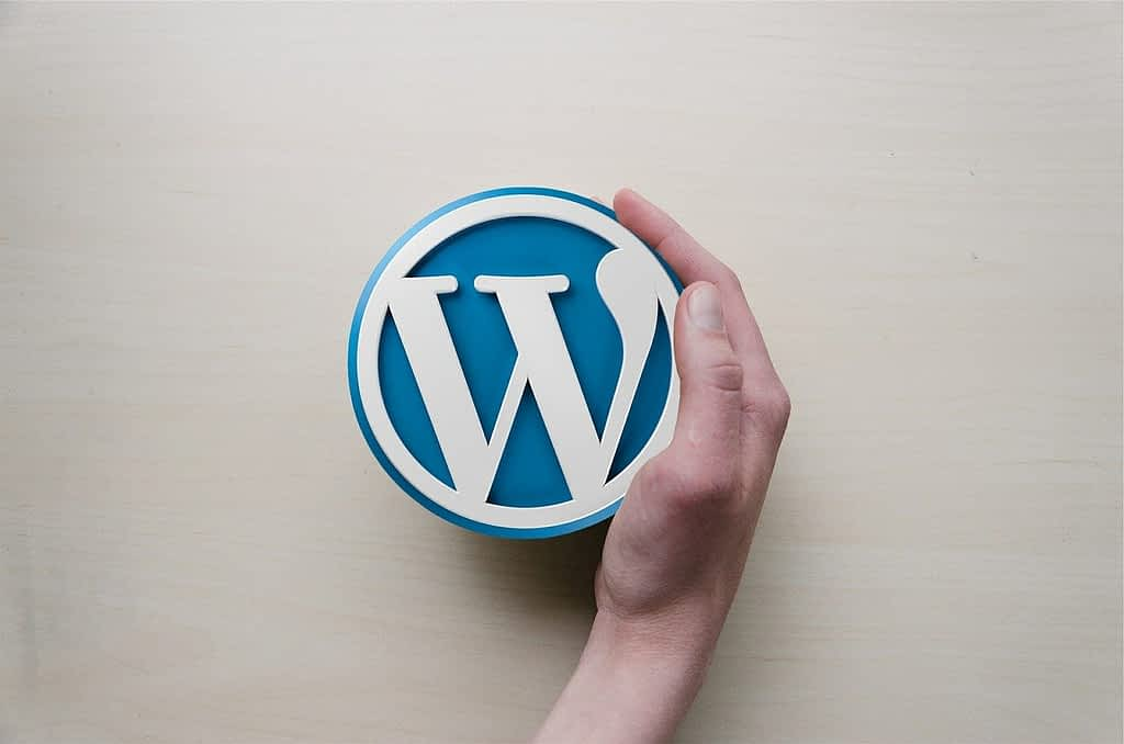 WordPress-Our Choice for Your Website